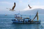 Normativa nacional de seguridad: Buques de Pesca