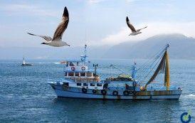 Coordinación de Actividad Empresariales en reparación de buques pesqueros