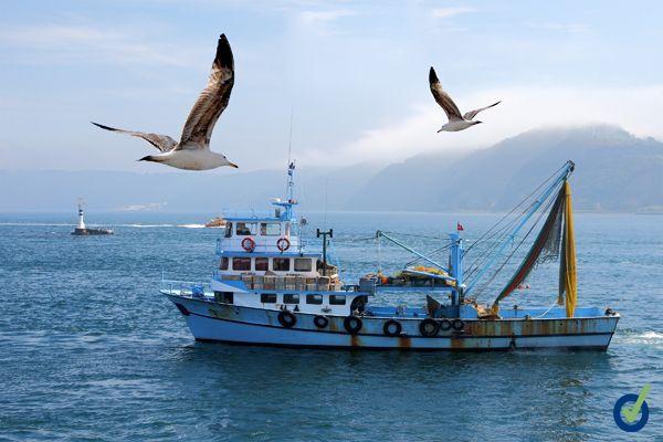 Guía de vigilancia de la salud en el sector pesquero