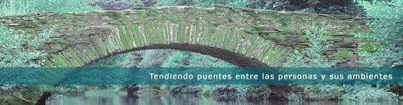 Cuestionario sobre la práctica de la Ergonomía en España