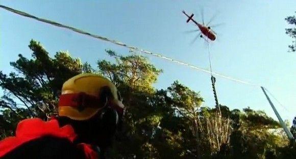 Prevención Extrema: ¿Cómo se poda un pino de 30 metros en pleno monte?