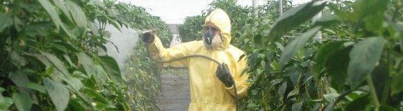 Uso y manejo de productos fitosanitarios