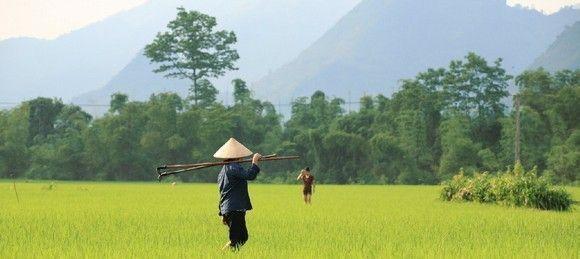 Prevencionar por el mundo: Viajamos a Vietnam y Camboya (2/3)