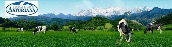 Central Lechera Asturiana, primera empresa láctea española que obtiene el certificado de Empresa Saludable