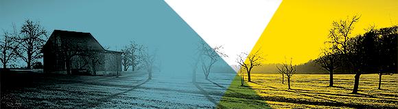 Empleos verdes, nuevos riesgos y riesgos emergentes