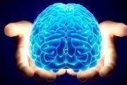 PrevenConsejo: Evaluación simplificada del error humano