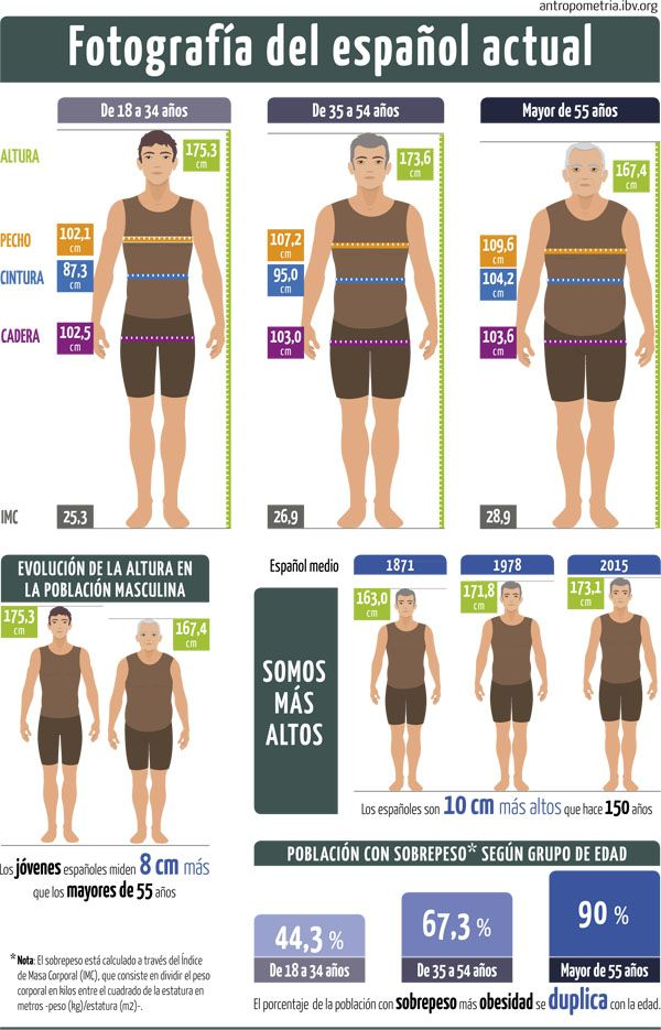 Un estudio antropométrico desvela las medidas actuales del hombre español