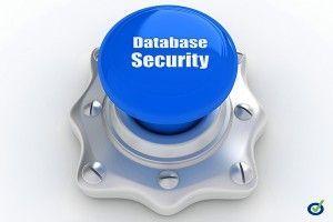base datos seguridad