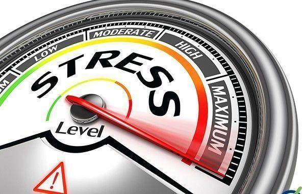 Ejercicios para disminuir el estrés (video)