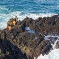 Reconocido como laboral el accidente de una mariscadora fuera de la playa