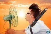 Estrés Térmico y Olas de Calor
