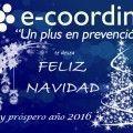 Postal_navidad_ecoordina