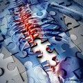 columna_vertebral_método_ocra