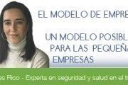 El modelo de Empresa Saludable: un modelo posible también para las PYMES