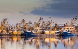 Selección de Equipos de Flotación Individual en Buques de Pesca de Bajura