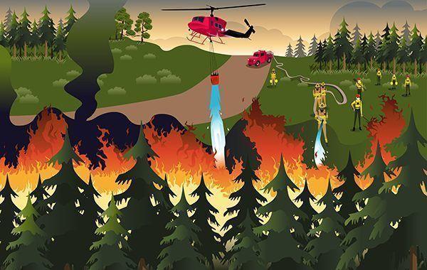 Manual de buenas prácticas en Prevención de Incendios Forestales