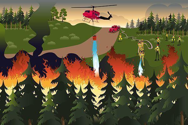Manual De Buenas Prácticas En Prevención De Incendios