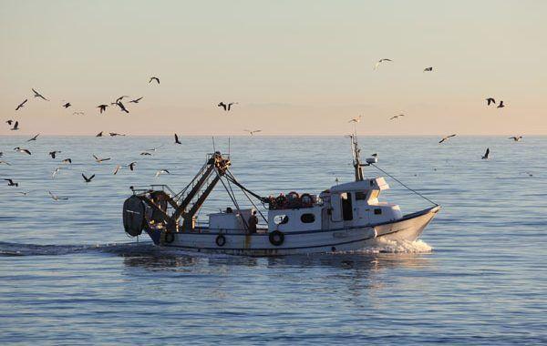 Presentada la Guía de la Vigilancia de la Salud en el Sector Pesquero
