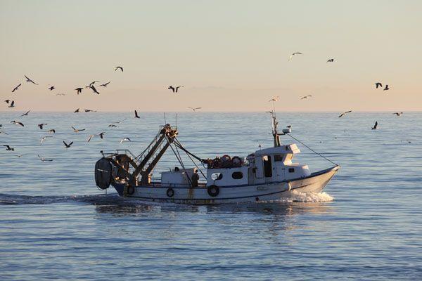 Real Decreto 701/2016, requisitos de los equipos marinos destinados a ser embarcados en los buques