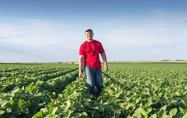 Manual de buenas practicas en el sector hortofrutícola