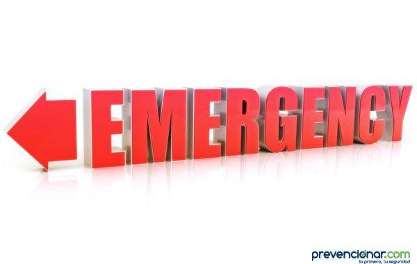 Decreto Legislativo 1/2017, Ley de Gestión de Emergencias