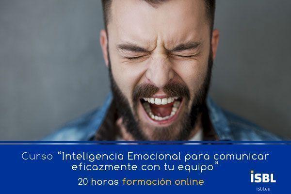 Curso OnLine: Inteligencia Emocional para comunicar eficazmente con tu equipo