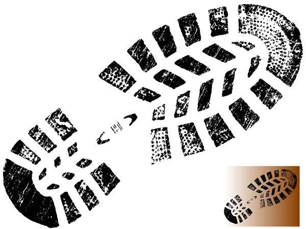 ¿Conoces los tipos de calzado que existen en el mercado laboral?