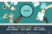 Curso: Auditor Líder (100% OnLine) – ISO 45001 – ISO 9001 – ISO 14001 (Mayo 2018)