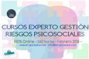 Conviértase un experto en Riesgos Psicosociales - Comienzo 20 Febrero