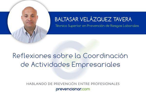 Reflexiones sobre la Coordinación de Actividades Empresariales