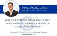 Condena por desviar bienes para no hacer frente a indemnización por accidente de trabajo (AP de Granada)