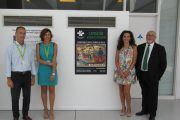 El aeropuerto de Palma de Mallorca alberga la exposición de carteles españoles de prevención del siglo XX