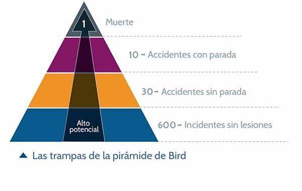 Las trampas de la pirámide de Bird