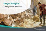 Riesgos Biológicos: Trabajar con animales