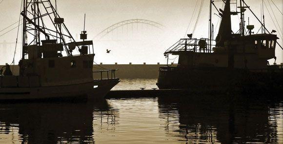 Guías de seguridad y salud en el sector pesquero - Descarga