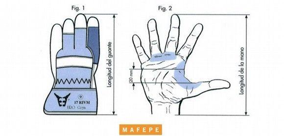 Medidas y tallas de manos y guantes de seguridad
