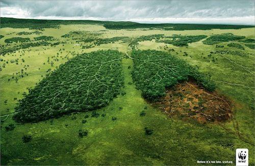 Las 10 empresas más sostenibles según WWF
