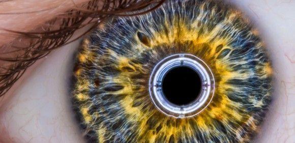 Prevención: una visión más allá de lo técnico