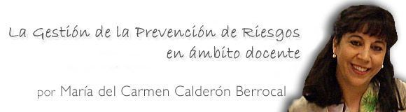 BANNER-carmen_calderon2
