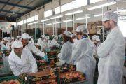 Agromartín: Ejemplo de empresa saludable