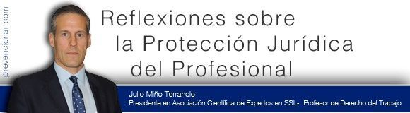 Reflexiones sobre la Protección Jurídica del Profesional