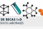 IX Convocatoria de Becas de I+D en Prevención de Riesgos Laborales de Fundación Prevent