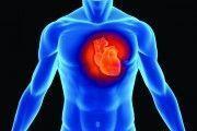 Presentan un App para enseñar a controlar los factores de riesgo cardiovascular