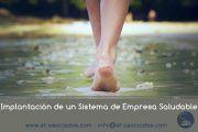 Implantación de un Sistema de Empresa Saludable