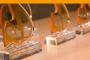 Conoce al jurado de II Premios Empresa Saludable