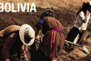 Actuaciones para empresas saludables en el sector industrial boliviano