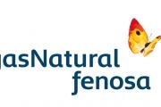 Gas Natural Fenosa patrocina los Premios Empresa Saludable