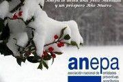 ANEPA les desea una FELIZ NAVIDAD y Salud, Seguridad y Prosperidad para el 2016