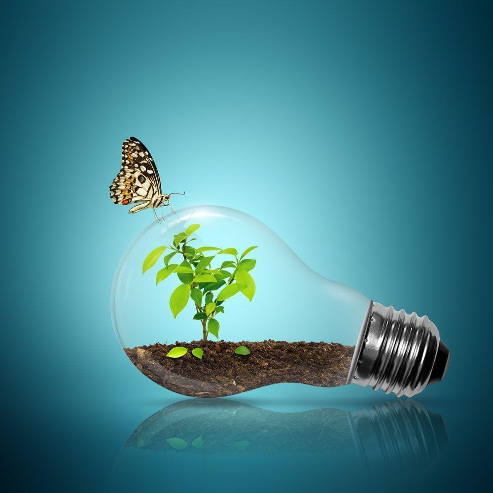 Henkel se suma al compromiso de los CEOs en favor de la acción por el clima