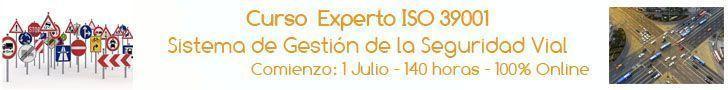 experto_39001_2